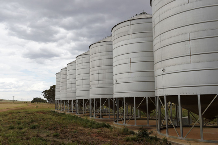 Canola storage bins in Australia. Photo: Bloomberg