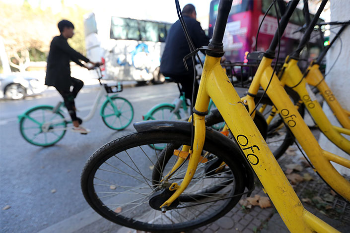 Ofo bikes await riders on Nov. 13 in Kunming, Southwest China's Yunnan province. Photo: VCG