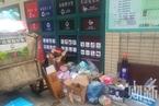 垃圾分类法规即将生效 上海各街道已招标购买服务