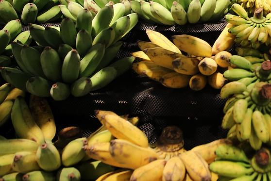 China Goes Bananas for Bananas