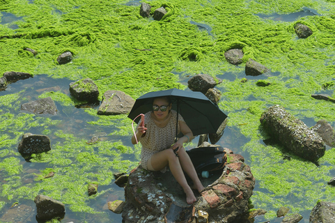 A woman takes a selfie with seaweed in the background on June 29. Photo: VCG