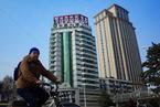 中国寿险业怪状:寿险产品占比最小