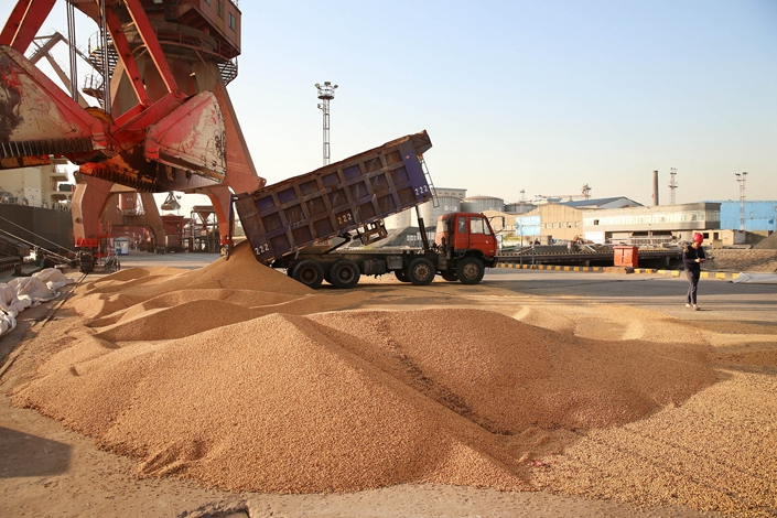 Brazilian soybeans are unloaded at Nantong port, East China's Jiangsu province, on April 9. Photo: VCG