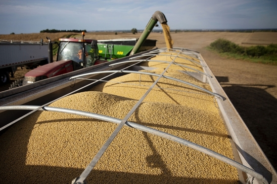 As China Halts U.S. Soy Purchases, 'Unknown' Buyer Steps Up