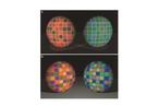 蓝色还是绿色?起决定作用的是大脑而非眼睛|科学