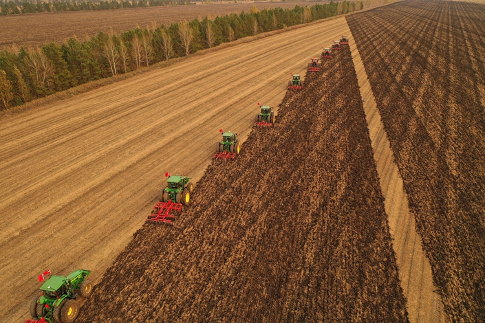 Harvesters collect the soybean crop on Sept. 28 in Heihe, Northeast China's Heilongjiang province. Photo: VCG