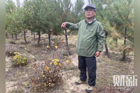 塞上植林廿七年:一个日本志愿者的中国绿化之路