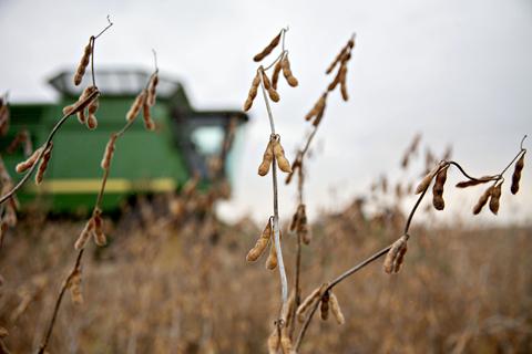 """美谈判团成员:中美""""变暖趋势""""在持续 乐见互释农产出口善意"""