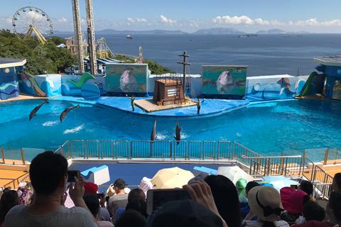 港府拟拨106亿港元 能解海洋公园财困吗?