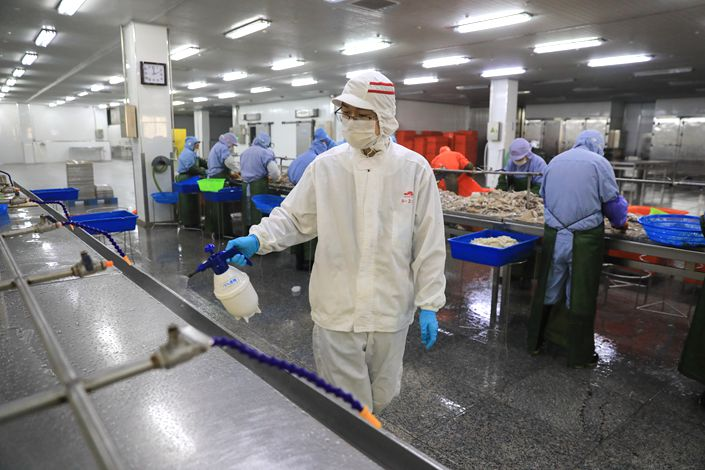 After the Lunar New Year holiday, workers at a seafood processing plant are back on the job Saturday in Zhoushan, East China's Zhejiang province. Photo: IC Photo