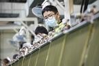 TCL科技拟42亿元收购武汉华星四成股权 配套募资不超26亿元