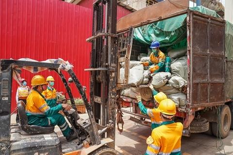 机构评2019全球十大环境热点 洋垃圾禁令等事件入选