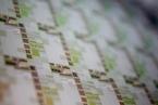 T早报丨中芯国际科创板IPO定价,或成今年A股募资王;工业富联5.6亿元投资鼎捷软件成第一大股东