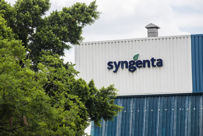 Syngenta's plant in Blitz, South Africa, on Feb. 3.