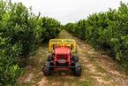 无人化农业设备需求旺盛 极飞科技量产农业无人车