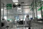 蒙牛3.95亿港元增持中国圣牧 强化奶源控制