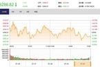 今日收盘:科技股回调领跌 沪指下跌0.23%结束三连涨