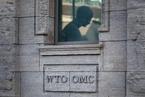 社论|WTO改革正当时