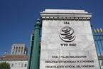 专栏|WTO的诸边谈判是维系全球贸易体系的绝佳方式