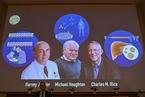 美英三位科学家获2020诺贝尔生理学或医学奖
