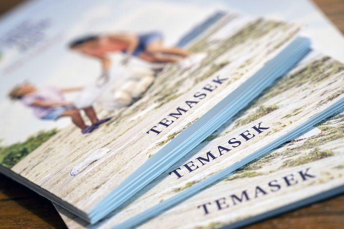 Copies of the Temasek Holdings Pte annual report are arranged for a photograph in Singapore