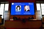 """为基因编辑提供""""魔剪"""" 两位女科学家获诺贝尔化学奖"""