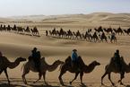 """""""双节""""假期全国旅游6.37亿人次 同比降两成"""