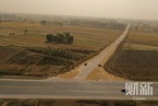 警惕耕地非粮用途 国办要求保障主粮种植面积