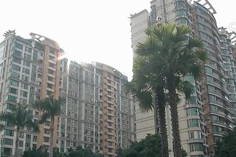 公共收益透明化 广州一小区业委会给业主分红-第1张图片
