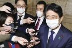 """""""赏樱会""""争议再发酵 日本检方拟起诉安倍首席秘书"""