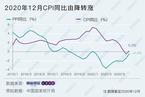 2020年12月CPI同比增长0.2% 由降转涨