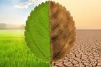 """重建全球经济,""""绿色复苏""""知易行难"""
