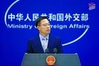 外交部:世卫专家组签证期限可满足在华工作需要