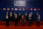 张春霖:CPTPP的国企规则不是中国加入的障碍
