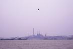 财新周刊|新污染物治理起步