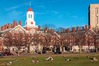 随笔|逃离哈佛