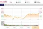 今日收盘:医药股领涨 创业板指低开高走涨0.56%
