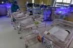 2020年多地出生人口数量下跌 全国人口普查结果成焦点