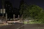 江苏南通遭强对流天气袭击 已致11死102伤