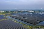 欧企看中碳中和为在华新机遇 绿电成为投资决策重要因素