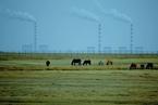 """CMF报告:实现""""双碳""""目标是场硬仗,路子怎么走"""