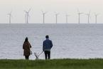 专栏|如何克服开征碳税的阻力