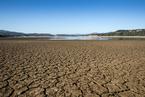 美国西部及巴西旱情蔓延 全球农作物价格或将继续上涨