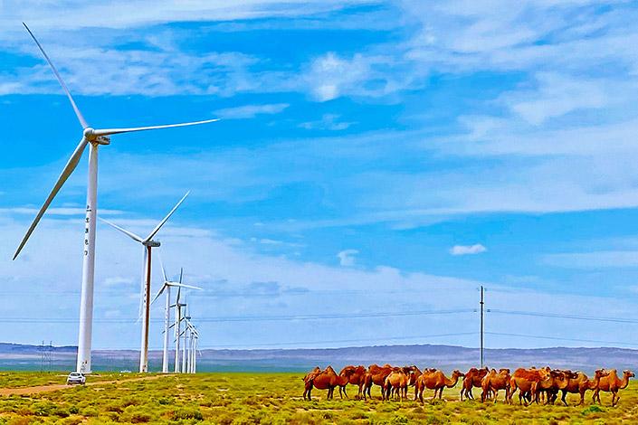 A wind power plant in Zhangye on June 24. Photo: VCG