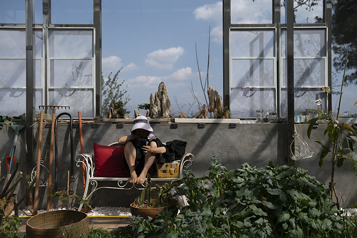 Hu Siqin sits in a greenhouse on March 10 in Kunming, Southwest China's Yunnan province. Photo: Liang Yingfei/Caixin