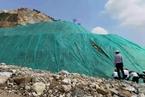 中央环保督察:广西大型国企破坏红树林屡禁不止