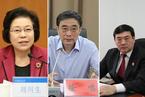 反腐记|刘川生投案 徐鸣、孟祥落马
