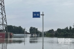 卫河漫堤决口 河南紧急启用7个蓄滞洪区