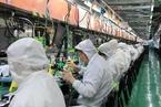 苹果手机订单预期大涨 郑州富士康加薪招人