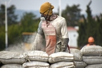 淡季效应加剧 国内水泥价格触底